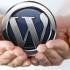 Любой блог или сайт, написанный на WordPress, может приносить Вам доходы. Главное — создать сайт правильно и придерживаться определенных процессов. Второй вопрос: будет ли сайт приносить реальную прибыль после размещения рекламы?